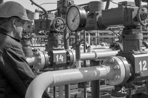 Польша будет получать половину украинского газа