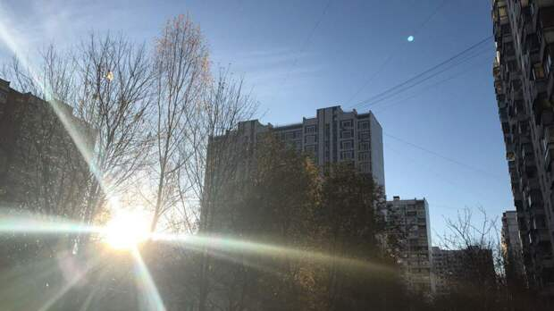 Тишковец сообщил о раннем наступлении метеорологического лета в Москве