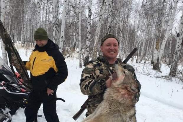 Из-за охоты с участием депутата, во время которой издевались над волком, начата новая проверка