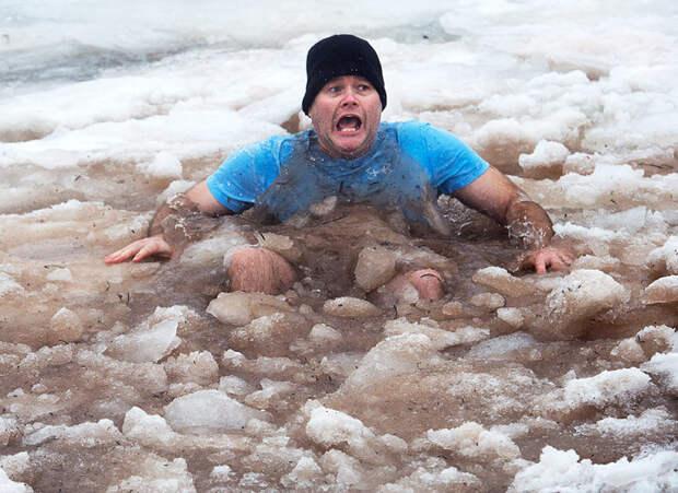 Многие просто в шоке зимние купания, интересно, моржи, эмоции