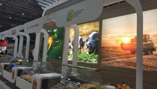 Подмосковье представило масштабную экспозицию на выставке «Золотая осень – 2019» на ВДНХ