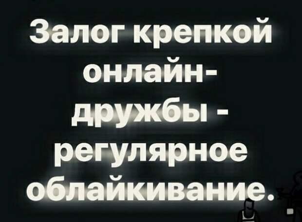 Парень и девушка гуляют в парке Девушка: — Милый ты знаешь, о чем я думаю?...