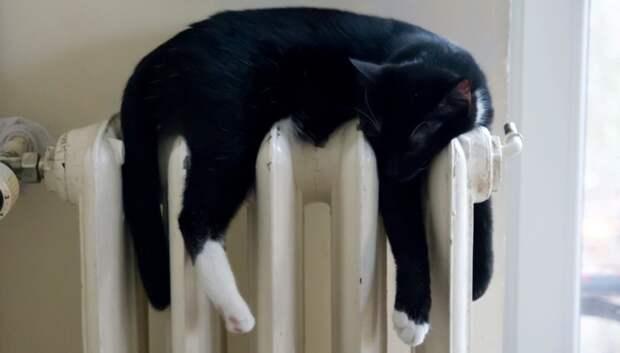В Подмосковье на 66% снизилось количество жалоб на отсутствие отопления