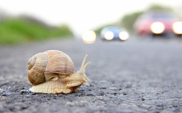 Медленные водители стали провоцировать больше аварий