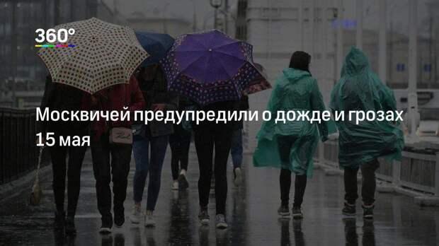 Москвичей предупредили о дожде и грозах 15 мая