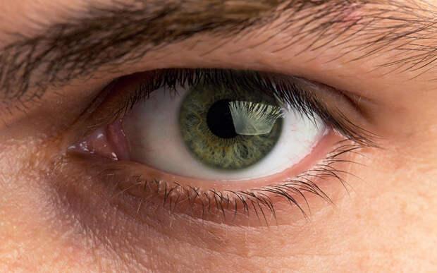 Американские учёные нашли связь между уровнем интеллекта и размером зрачка