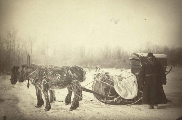 Почтовые сани в Сибири © Библиотека Конгресса США путешественник, россия