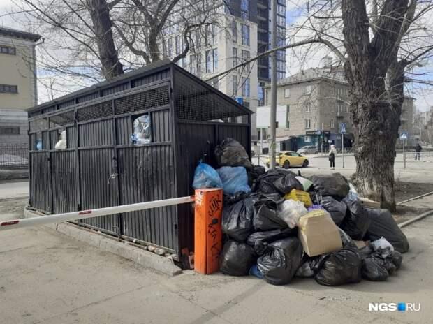 Горы мусора в центре Новосибирска возмутили даже прокуратуру