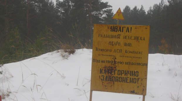 РАН разъяснила ситуацию с опасными ядерными реакциями на Чернобыльской АЭС