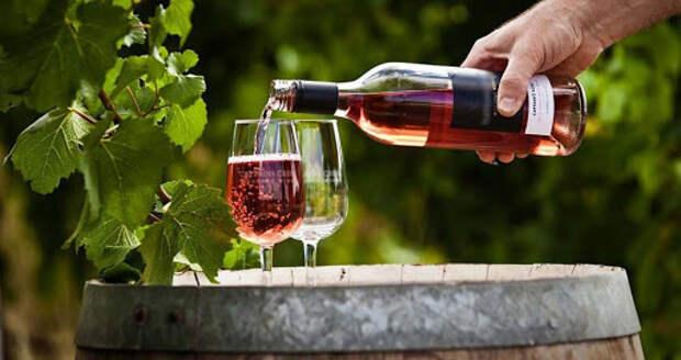 Крым будет производить органическое вино