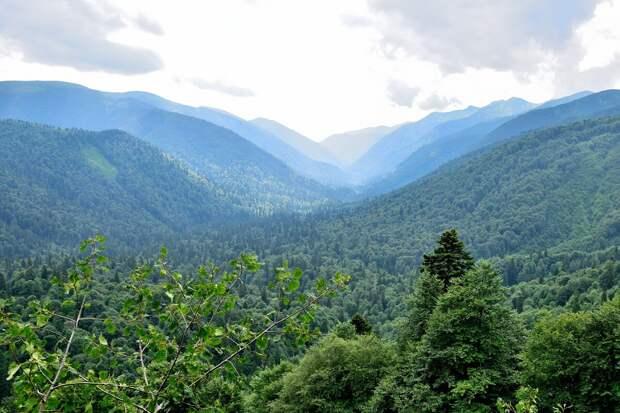 Вид с тропы к Белореченскому перевалу