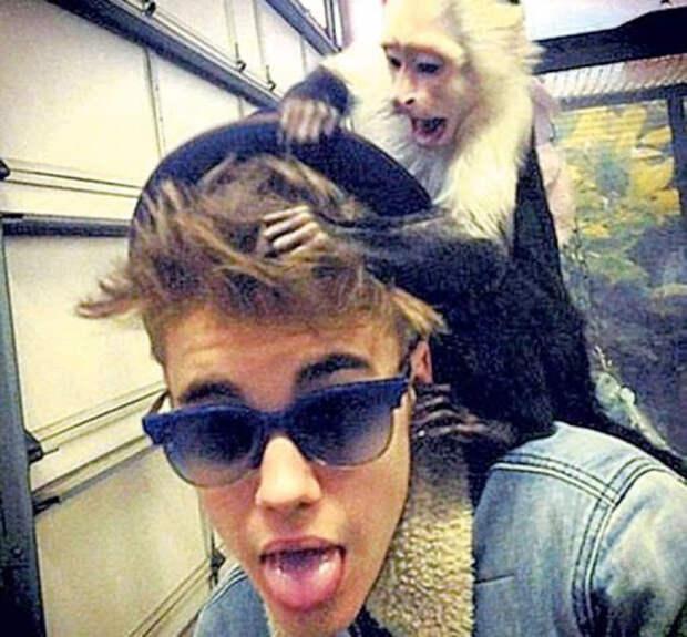 джастин бибер с обезьянкой на плече