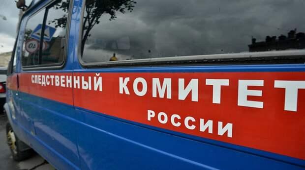 Нижегородский СК подтвердил задержание подозреваемого в убийстве 12-летней девочки