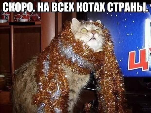 Мысли вслух - Ожидание Нового года