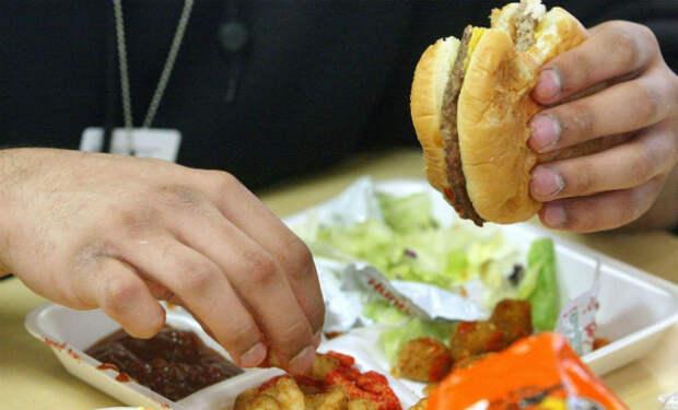 Ешь меньше и живи дольше: ученые назвали сокращение пищи прямым путем к долголетию