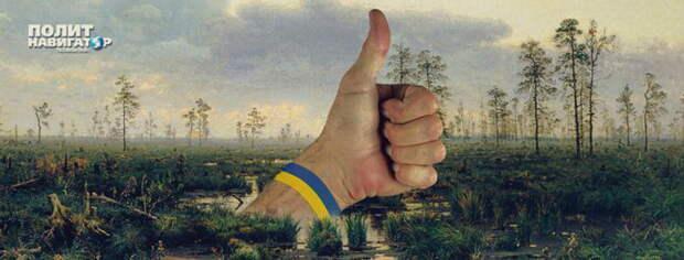 Киевский финансист: «Украинское болото будет чавкать баснями»