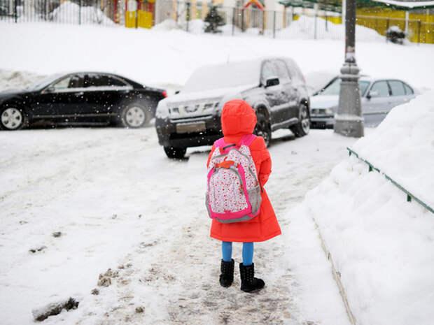 Почему питерских школьников не переведут на удаленку по примеру Москвы – чем мы хуже?