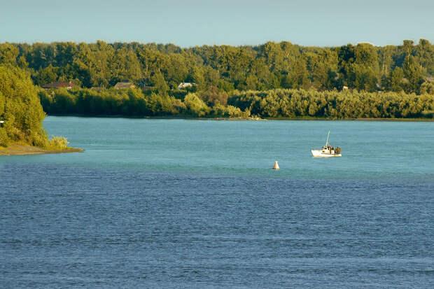 Разные реки - Катунь более бирюзовая, а Бия потемнее.