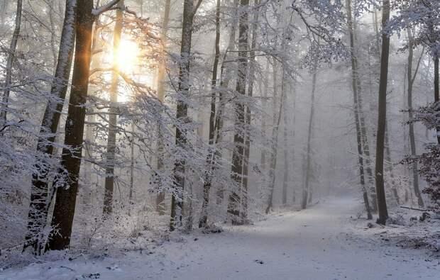 Медик назвал способы восполнить недостаток солнца зимой