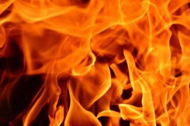 При пожаре в Никополе погибла пожилая женщина