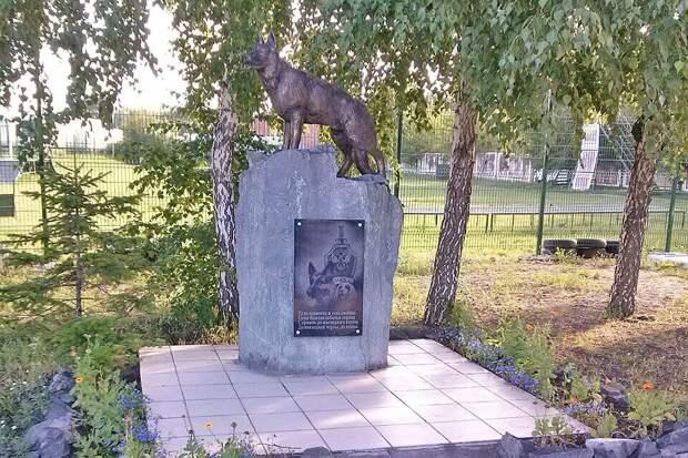 Вот так в 2009 году и появился памятник служебной собаке. Фото: из личного архива