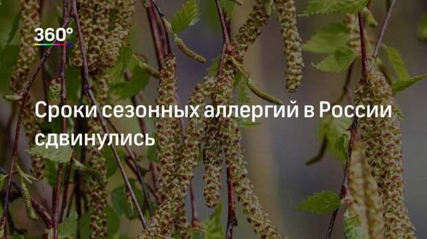 Сроки сезонных аллергий в России сдвинулись