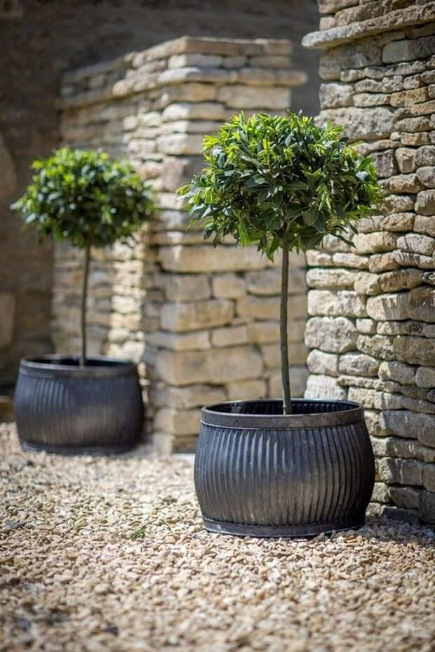 Вход в сад можно подчеркнуть парой цветочных вазонов