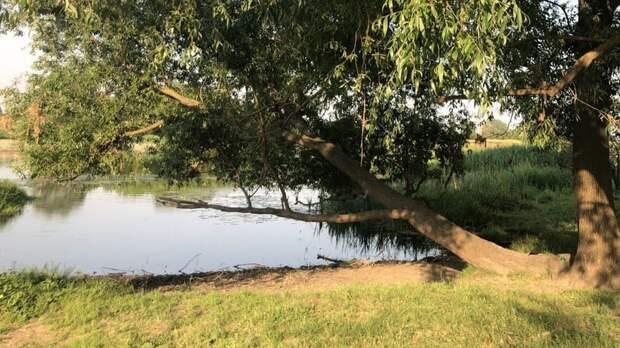СК проводит проверку из-за гибели 13-летней нижегородки в реке