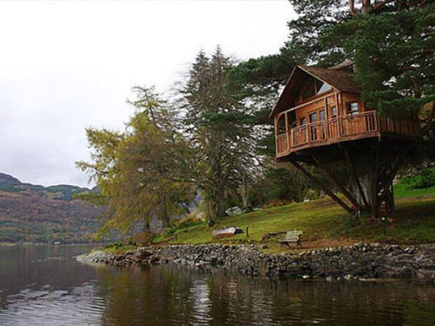 Фантистические дома на деревьях