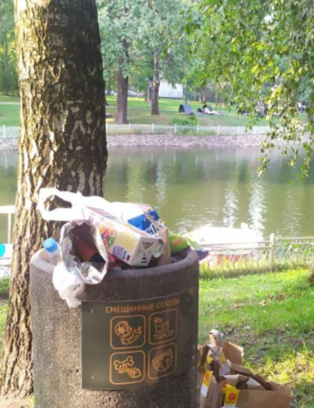 Территорию Лианозовского парка очистят от мусора