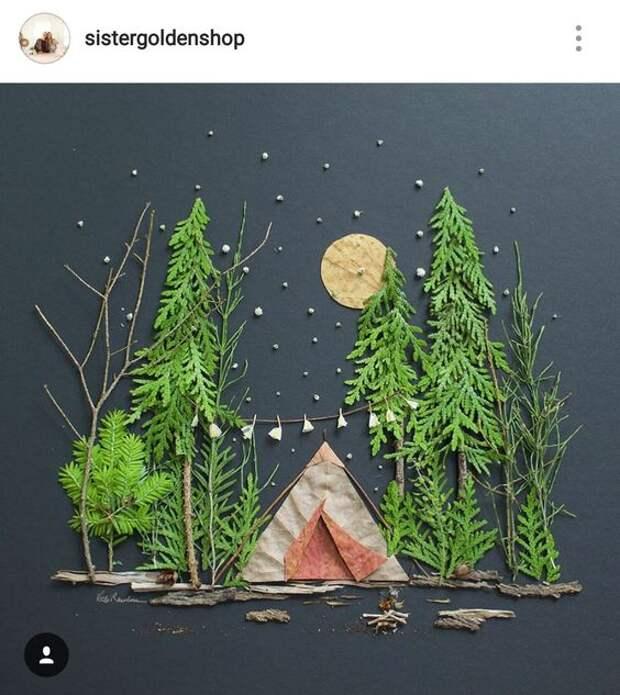 Идеи для картин из природных материалов