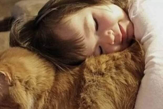 Трогательные объятия маленькой девочки с котиком умилили соцсети
