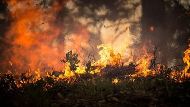 В Новосибирской области лётчики ЦВО провели учения по тушению лесных пожаров