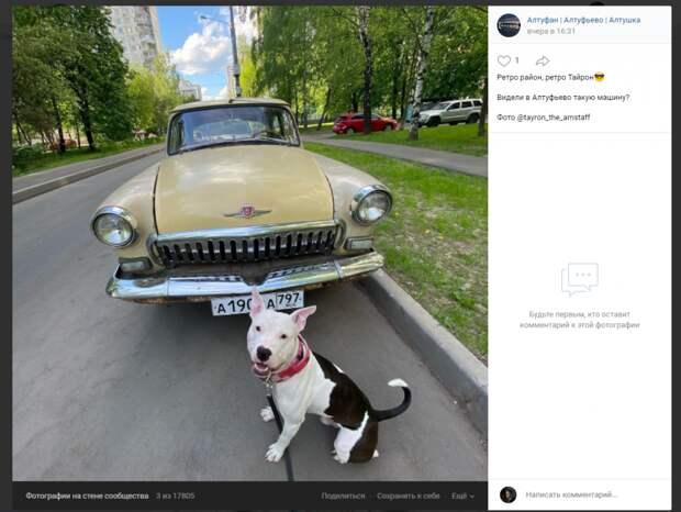 Фото дня: «машина времени» в Алтуфьеве