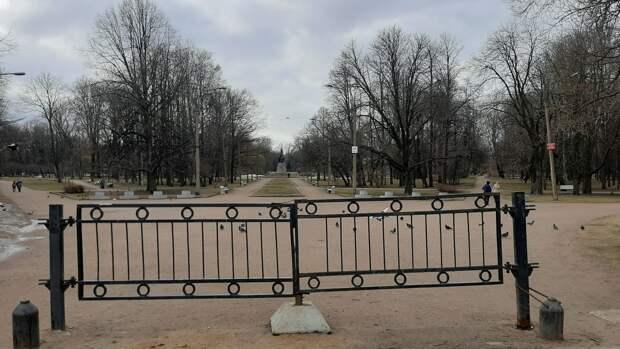 Особый противопожарный режим начнет действовать в Петербурге с 26 апреля