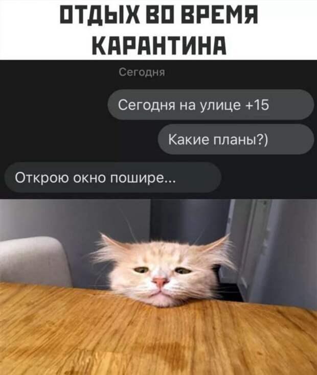 Смешные комментарии. Подборка chert-poberi-kom-chert-poberi-kom-15580230082020-10 картинка chert-poberi-kom-15580230082020-10