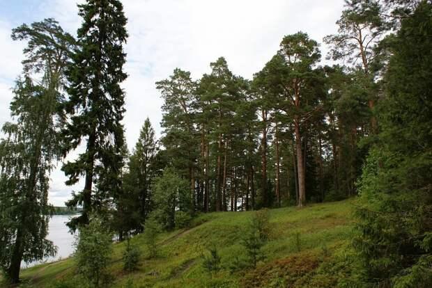 В Тверской области утверждены границы 17 особо охраняемых природных территорий регионального значения