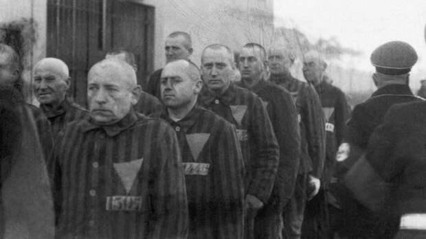 Почему в нацистской Германии розовый треугольник считался хуже звезды Давида?