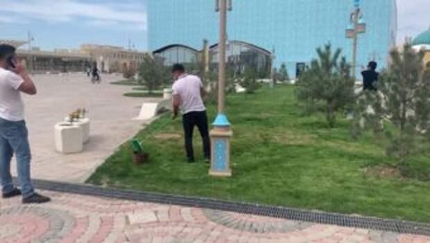 Газон в Туркестане не красили, а …. минерализировали