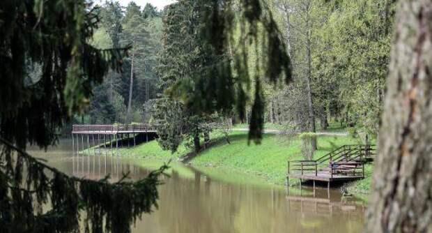 Очистку пруда во Власихе проведут к концу лета