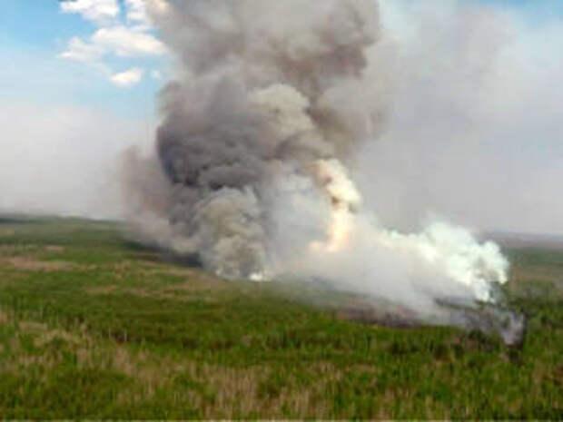 Так близко к Тюмени пожары еще не подходили