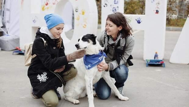 Выставка временно бездомных животных центра «Юна» пройдет в Москве 3 ноября