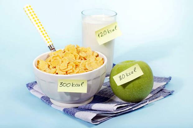 Базовая программа на массу и похудение. Рассчет калорийности и состава питания.