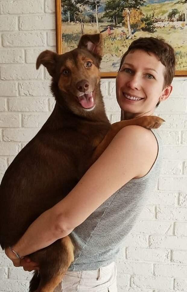 Фредди и куриные лапки: щенок потерял маму и жил на заброшенном заводе, пока с ним не случилось счастье