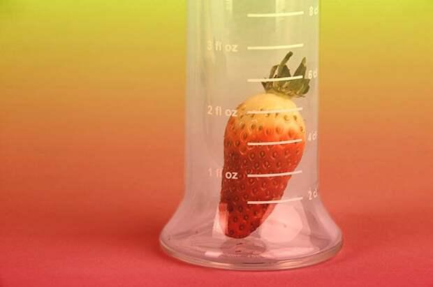 Ягода №1. Что получится, если скрестить землянику и клубнику?