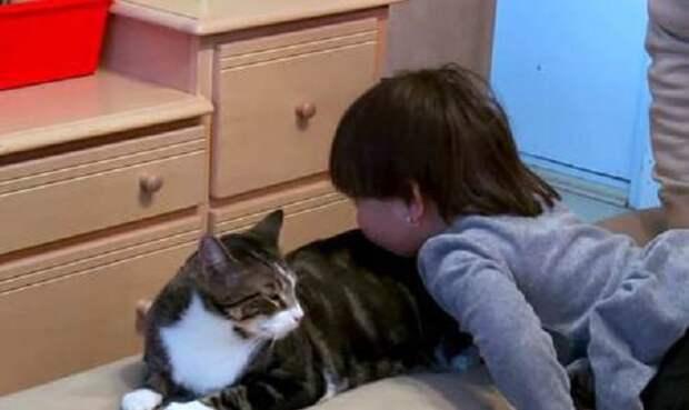 Девочка играет с котом