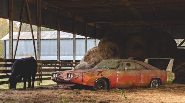 Интересные и дорогие находки в старых гаражах