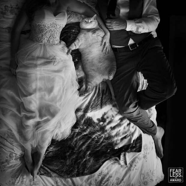 Автор снимка – американский фотограф Кристи Одом (Kristi Odom).