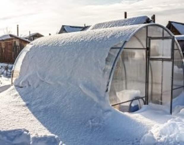 Как подготовить теплицу к зиме: полезные советы дачникам
