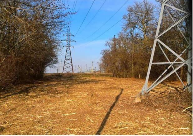 Энергетики «Россети Кубань» расчистили 160 га трасс ЛЭП в тихорецком энергорайоне